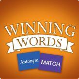 Antonym Match Giveaway