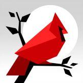 Cardinal Land - Jigsaw & Tangram Puzzle Blend Giveaway