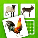 Farm Pairs - Match Animals Giveaway