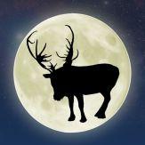ReindeerCam LIVE! Giveaway