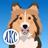 AKC Math Agility Giveaway