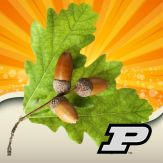 Purdue Tree Doctor Giveaway