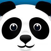 Pi Panda Giveaway