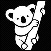Koala Nap Giveaway
