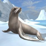 Sea Lion Simulator Giveaway