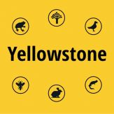 Yellowstone NP Field Guide Giveaway